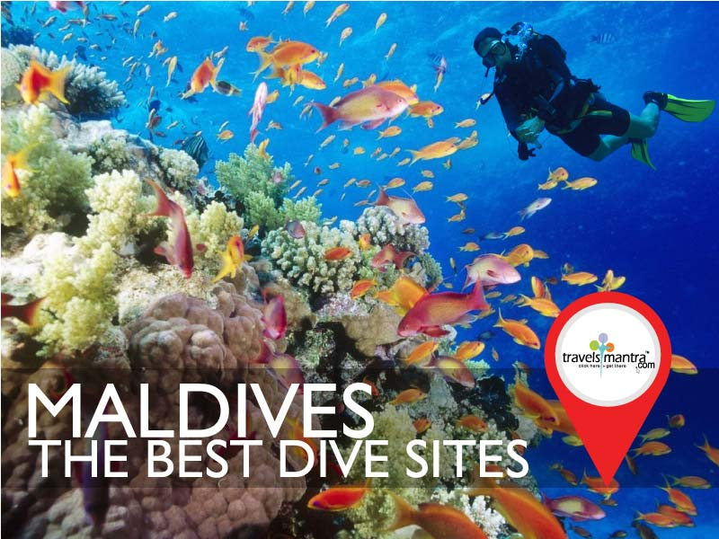 Best Dive Sites in Maldives