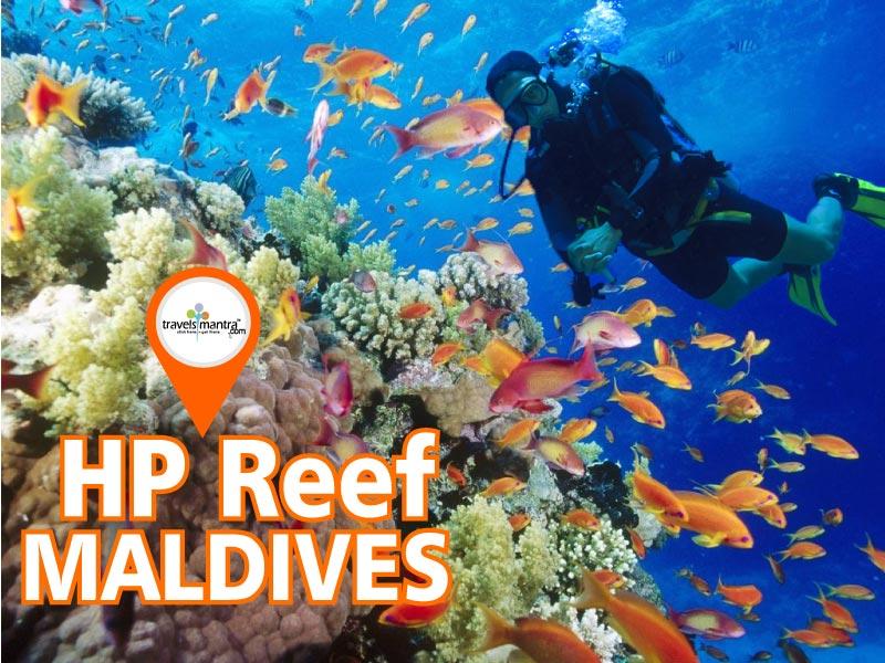 HP Reef Maldives